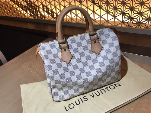ルイヴィトン Louis Vuitton スピーディ25 ダミエアズール N41534