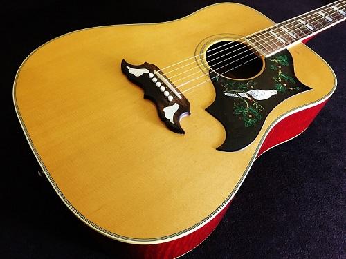 Gibson Dove 買取 アコースティックギター 京都の楽器買取ならマルカ楽器をご利用くださいませ!