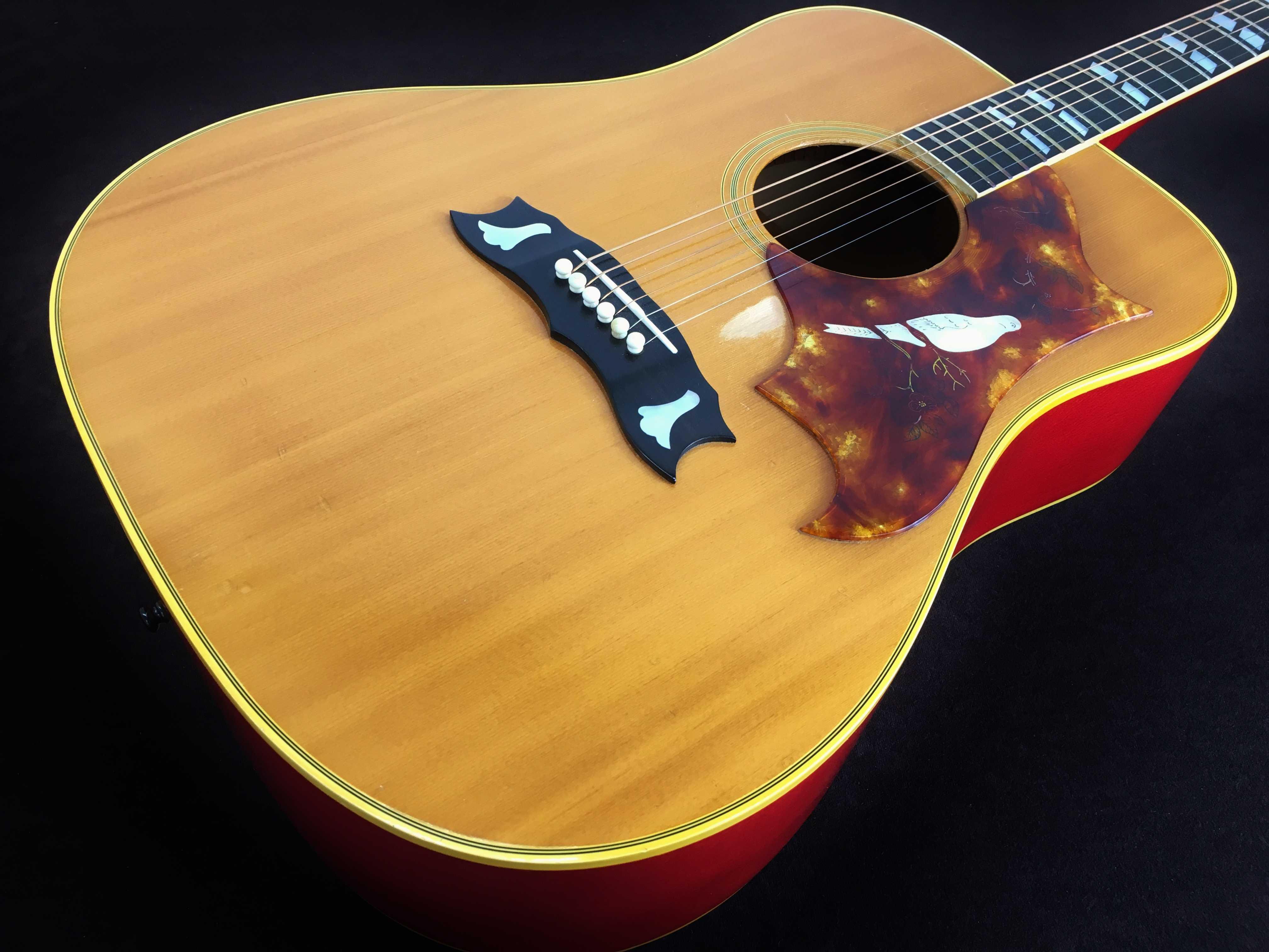 Gibson買取 Dove Custom 1973